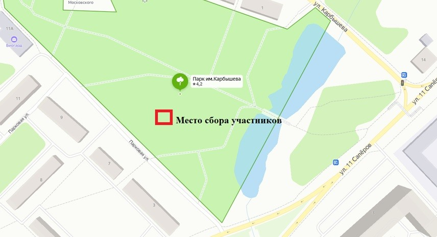 Парк Карбышева уберут от мусора
